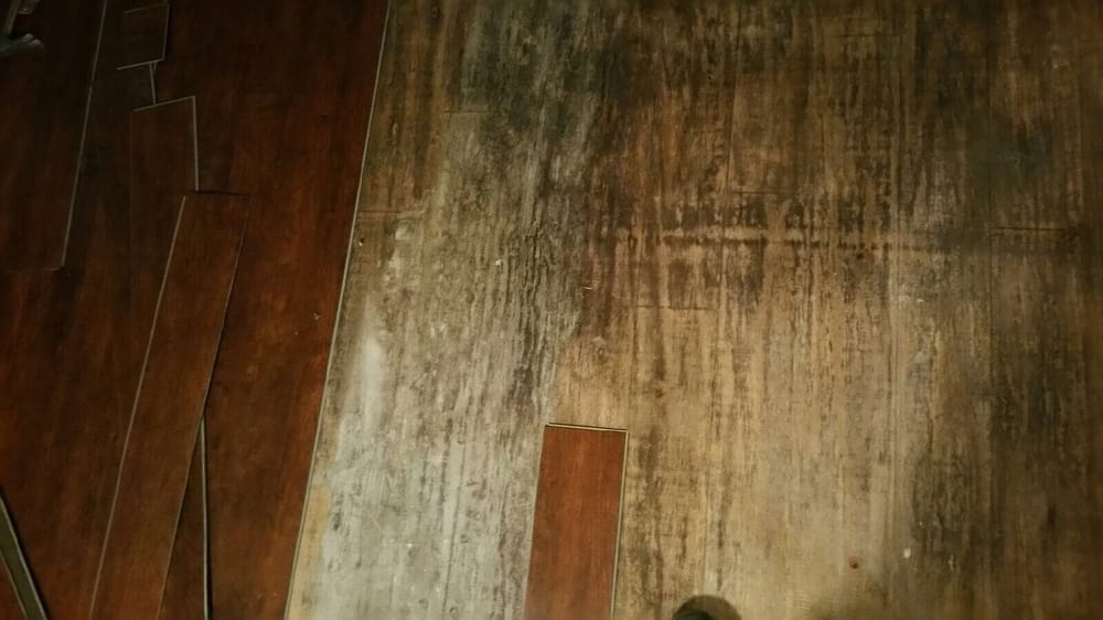 Mold Under My Flooring Caused By Moisture On The Slab