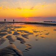 We Photo Of Huntington Beach State Park Murrells Inlet Sc United States