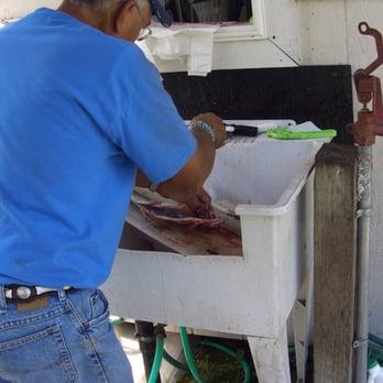Jim's U-Fish - 26 Ph...