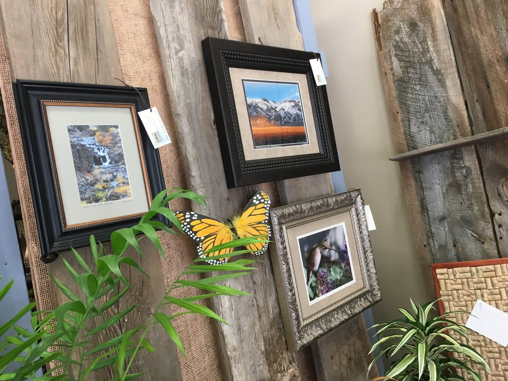 Back Yard Floral & Wine: 11 N F St, Lakeview, OR