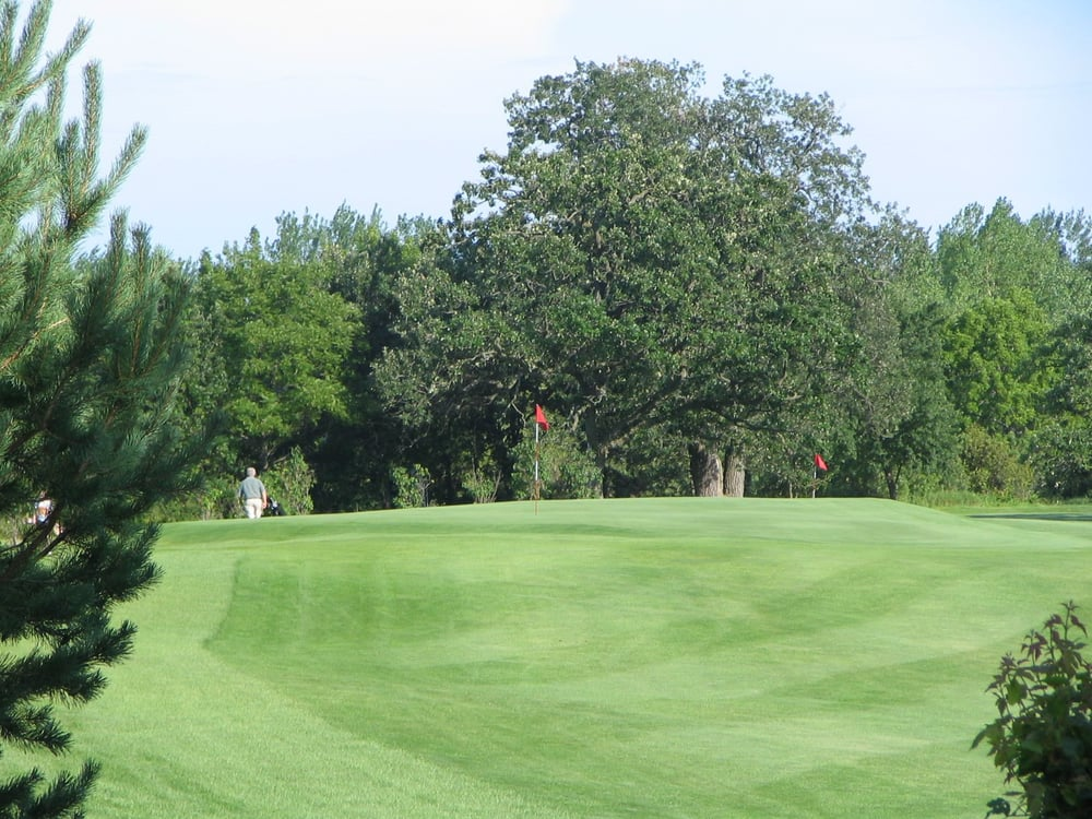 Meadow Greens Golf Course: 25238 540th Ave, Austin, MN