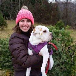 photo of middleburg christmas tree farm round hill va united states - Middleburg Christmas Tree Farm