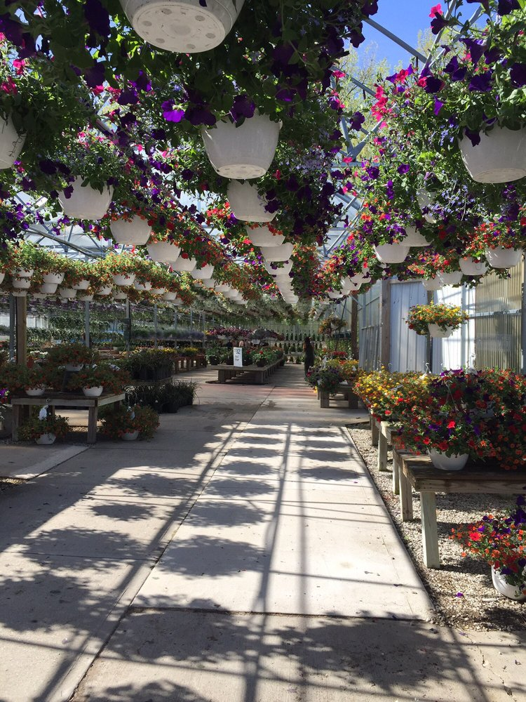 Vilt's Greenhouse: 24917 Stripmine Rd, Wilmington, IL