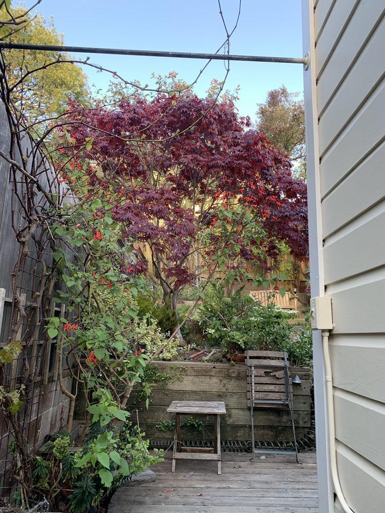 Evergreen Tree & Gardening Service