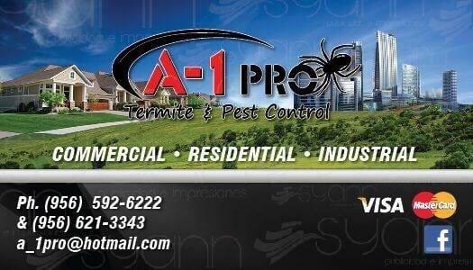 A-1PRO Termite & Pest Control: 3231 Pablo Kisel, Brownsville, TX