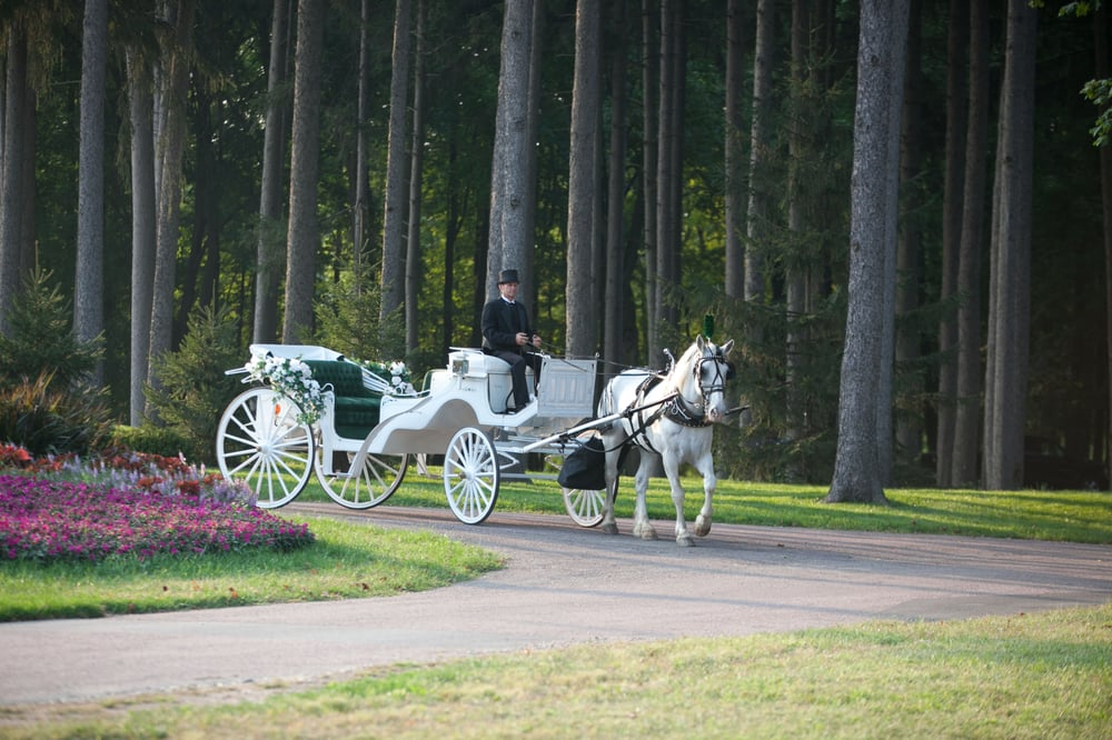 Jim & Becky's Horse and Carriage Service: 28057 S 88th Ave, Peotone, IL