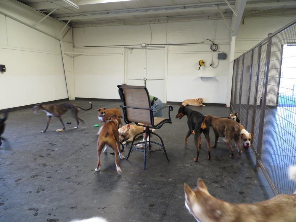 The Doghouse: 3221 Yosemite Ave, Lathrop, CA