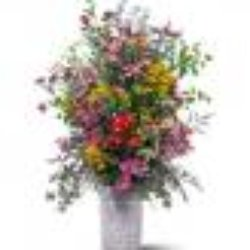 Eglinton Greenhouse And Florist Florists 2016 Bathurst Street Toronto O