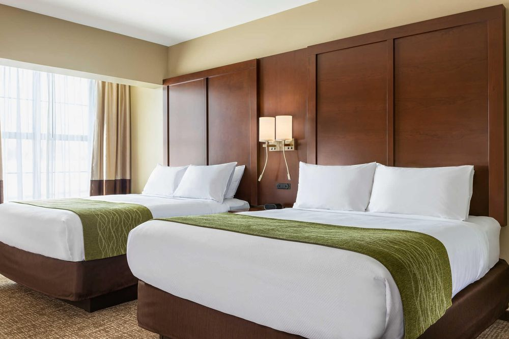 Comfort Inn & Suites: 130 Olson Drive, Lincoln, IL