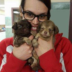 Companion Animal Hospital - 12 Photos & 10 Reviews