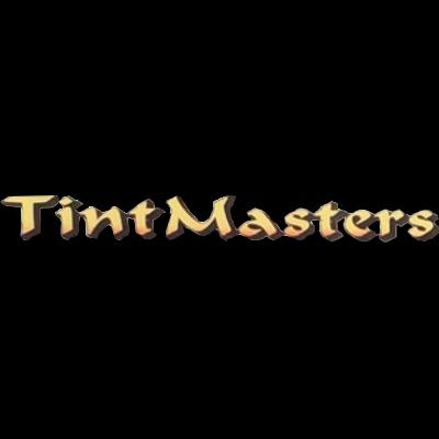 Tint Masters: 138 State Rte 207, East Palatka, FL