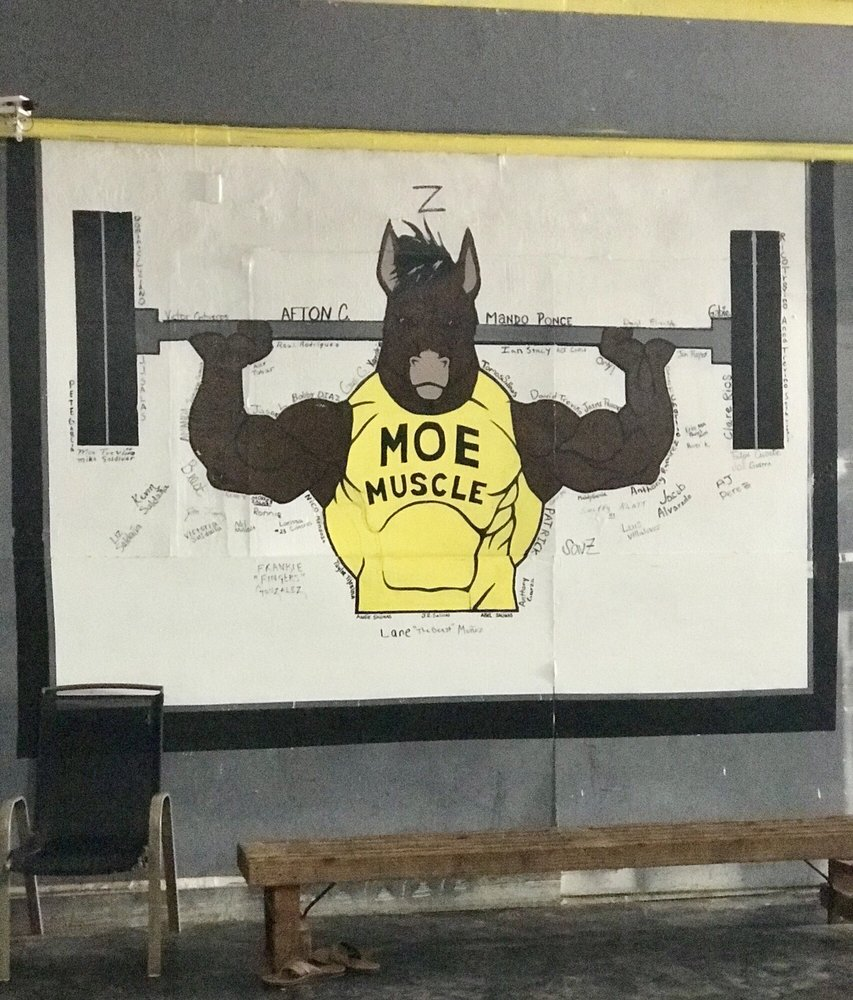 Moe Muscle: 63 N Johnson St, Alice, TX