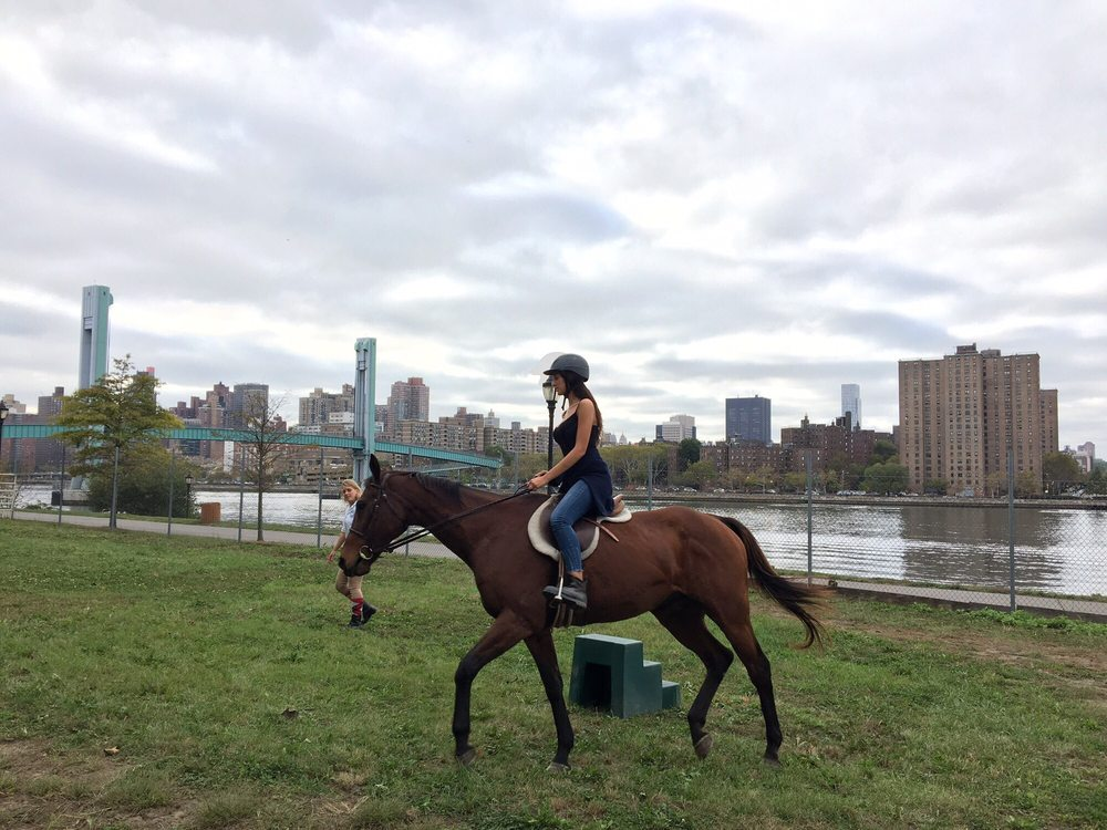 New York City Riding Academy