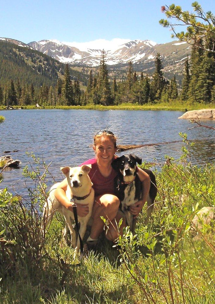 Dog Training San Diego Yelp