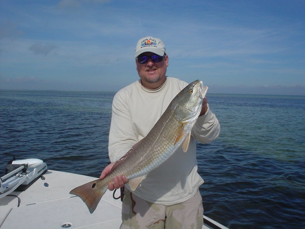 Fly fishing tampa get quote fishing 12030 w courtney for Tampa fly fishing