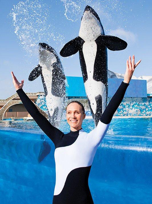 Seaworld San Antonio 793 Photos 404 Reviews
