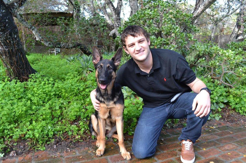 Dog Training Foreword