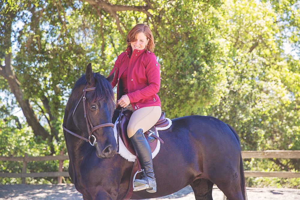 Five Star Equestrian 62 Photos Horse Boarding 12350