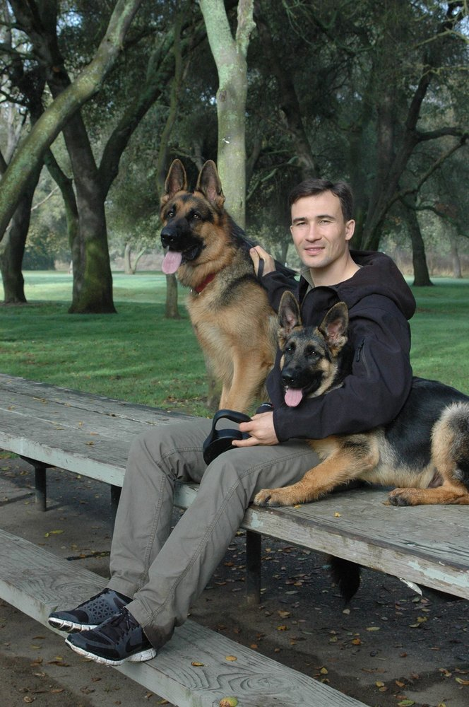 Customized Dog Training And Service Animals
