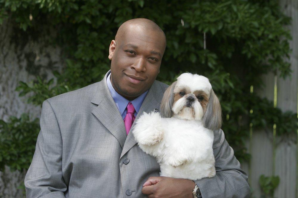 vip dog grooming   closed   pet groomers   4114 gallatin