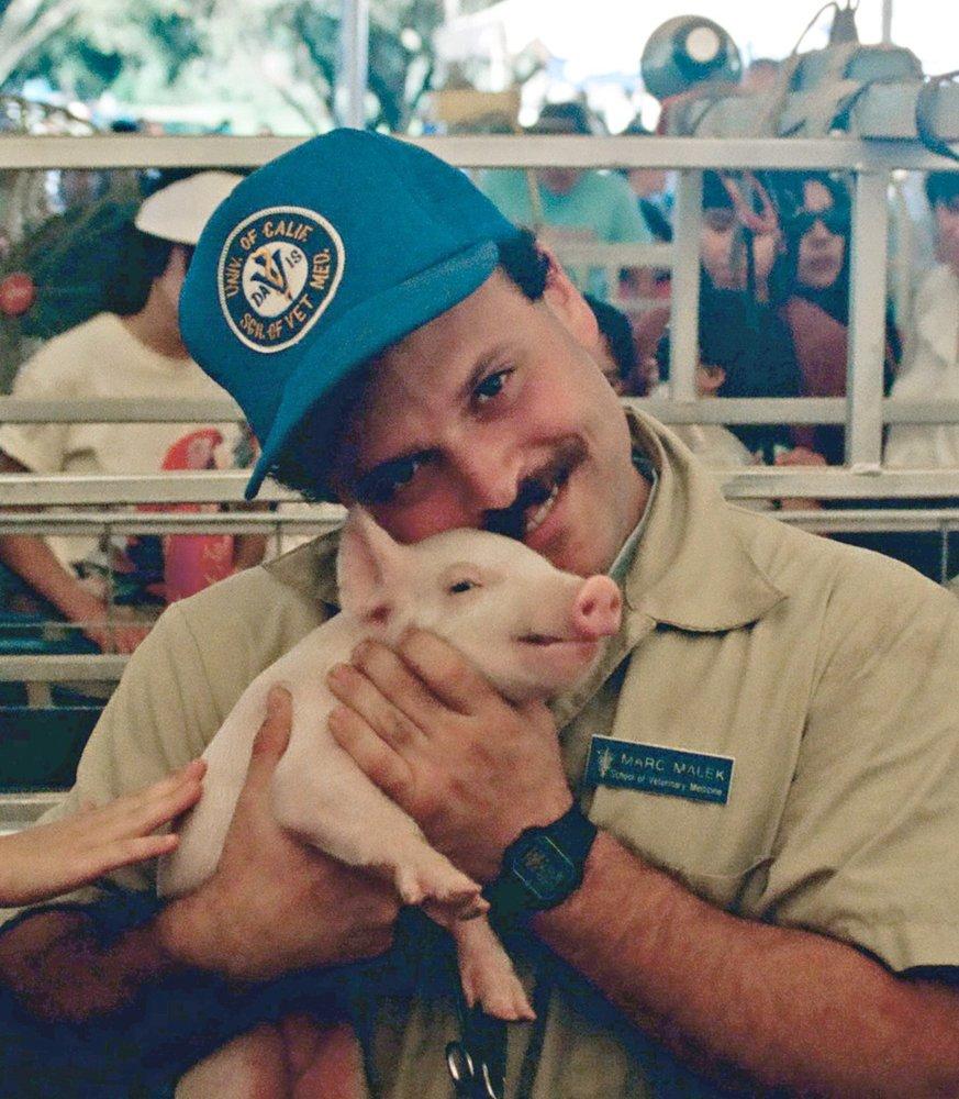 foothill farms veterinary hospital 23 photos u0026 35 reviews pet