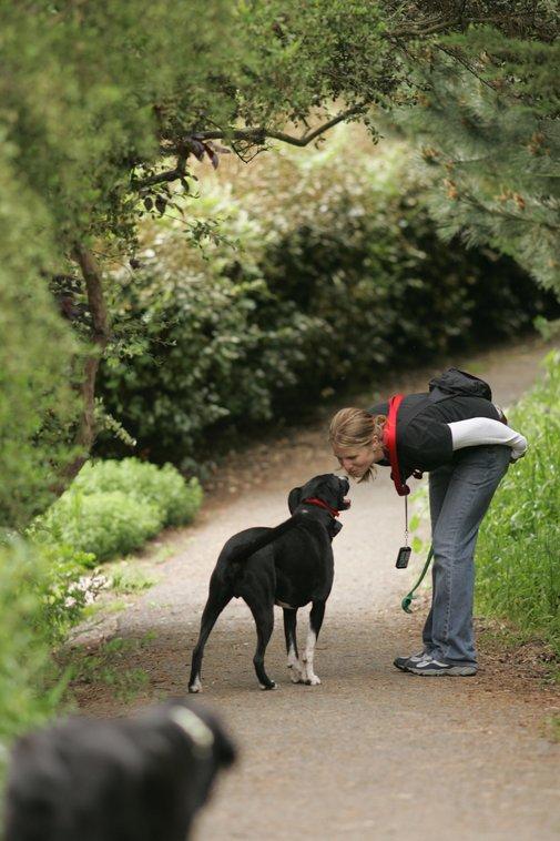 Vaughan Off Leash Dog Park