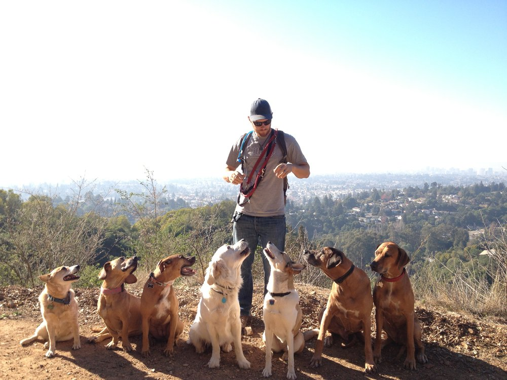 Dog Parks In Montclair Ca