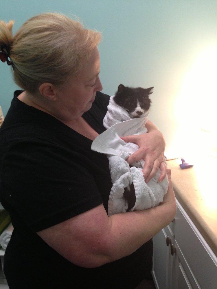 Kommentar Fra Nancy H På The Whole Cat And Kaboodle Bedriftseier