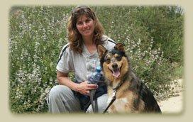 Dog Training Yelp San Diego