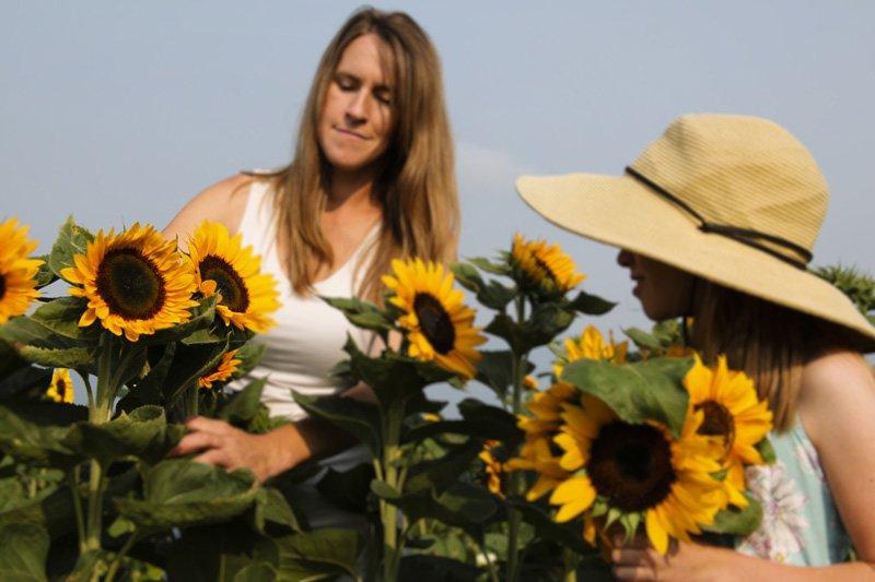 BeeHaven Flower Farm - Florists - 2431 Moon Shadow Rd, Bonners Ferry ...