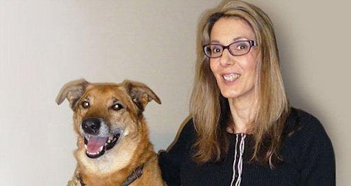 Paw Patrol Dog Walking And Pet Services Hamilton On