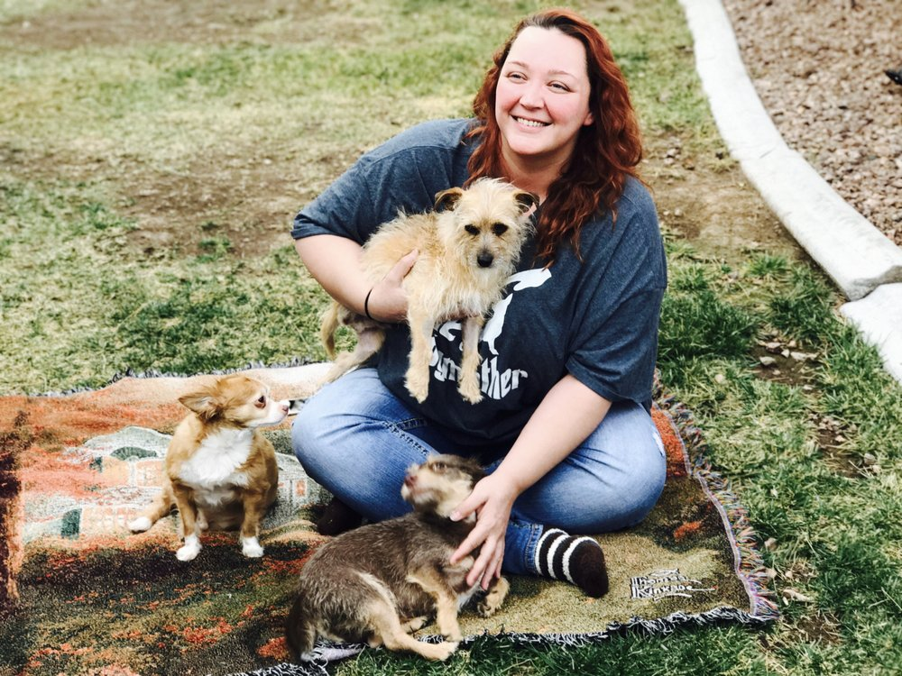 Out Of The Dog House Rescue Phone Number