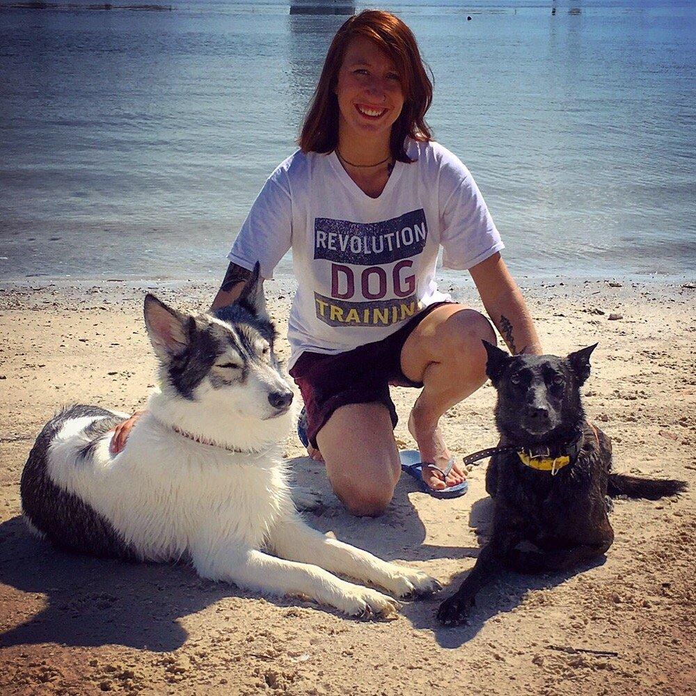 Tailored Dog Training Yelp