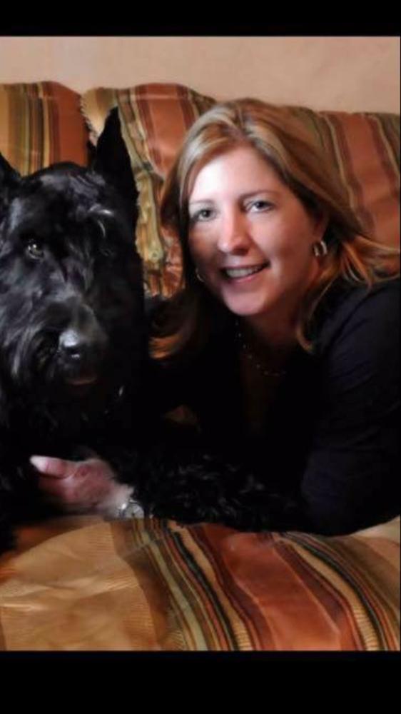 Dogs Rule Resort Keller Reviews