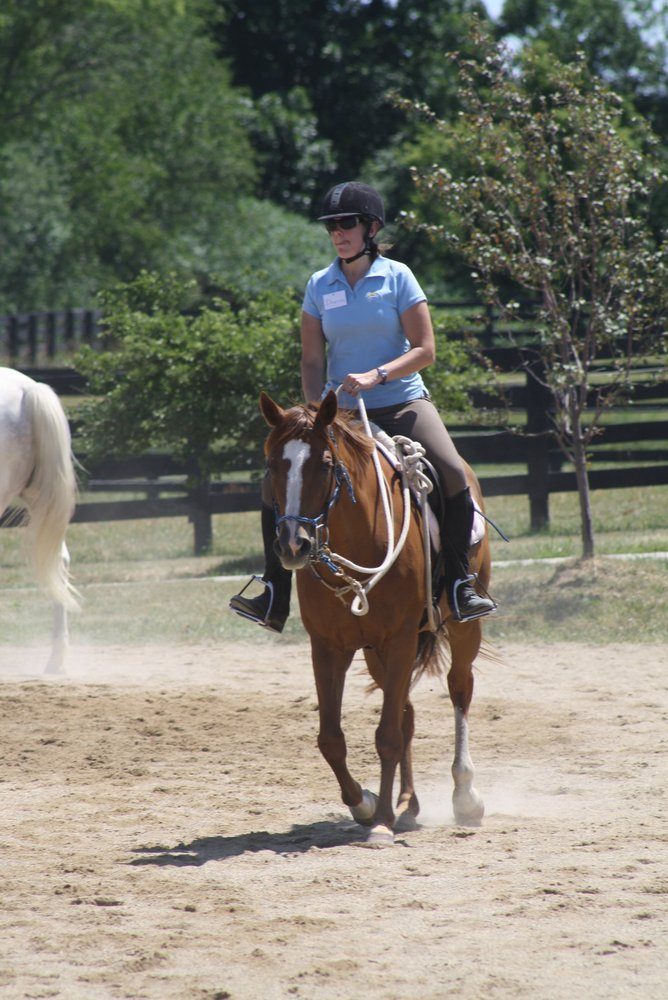 Natural Balance Training, Inc - Horseback Riding