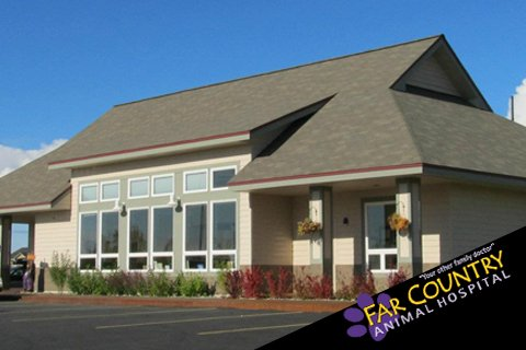 VCA Far Country Animal Hospital - (New) 10 Reviews