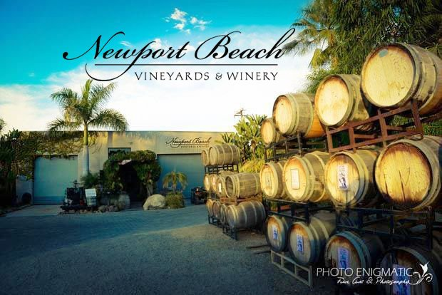 Newport Beach Vineyards Winery 62 Photos 20 Reviews