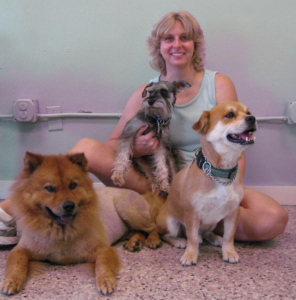 Natalie S Dog Grooming