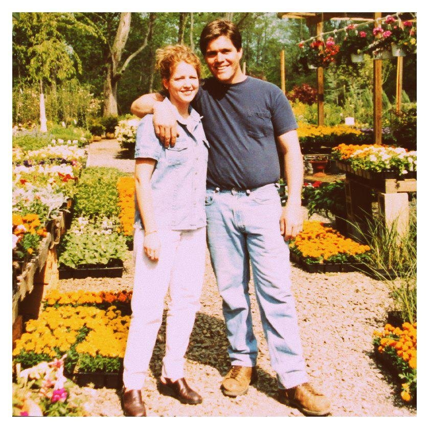 colonial nursery 61 photos nurseries amp gardening