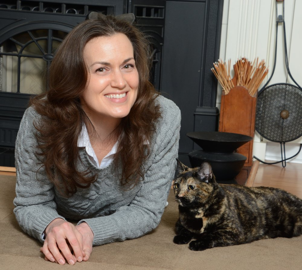 how to become a certified cat behavior consultant