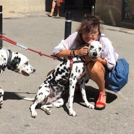 Dog Kennels Pleasanton Ca