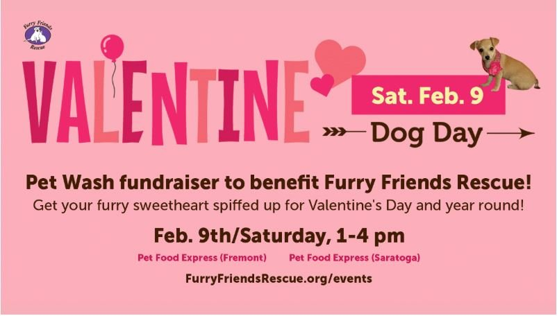 81d25cf78976d 2019 Valentine Dog Day! Pet Wash Fundraiser to Benefit Furry Friends  Rescue!