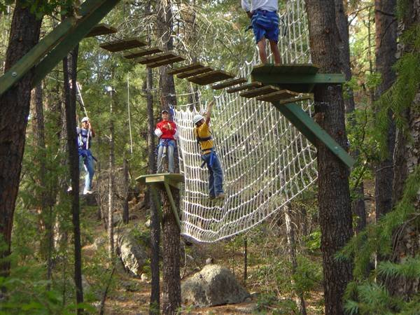 Hidden Ropes Course In The Trees San Francisco Events