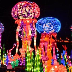 Hanart Culture's Chinese Lantern Festival