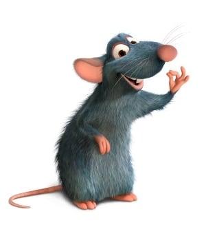 Rat S.
