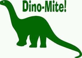 Dino S.