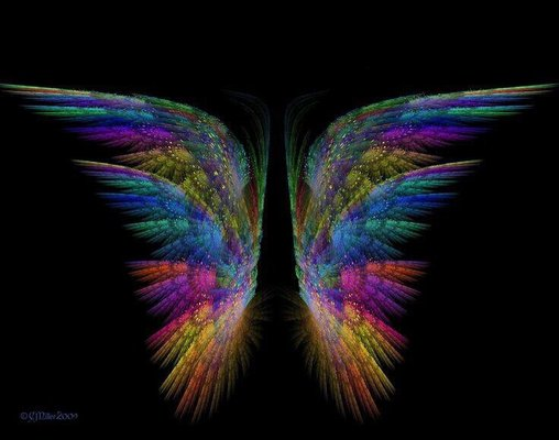 Angel S.