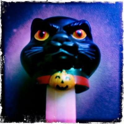 Kabo Kitty B.