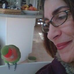 Janice Stagnitto E.