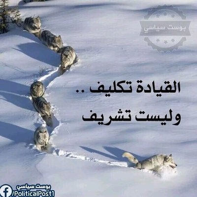 Marwan Y.